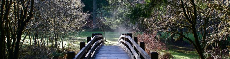 Silver Falls-bridge-72+